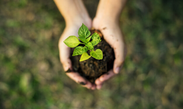 How procurement is partnering with suppliers to drive sustainability