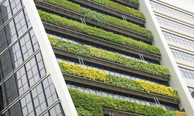 Procurement's emerging role as a driver of sustainability